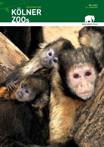 Jahresbericht 2010 - Kölner Zoo