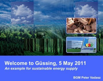 and introduction to the city of Güssing - B2Match