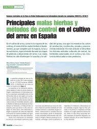 Principales malas hierbas y métodos de control en el cultivo del ...