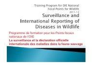 Programme de formation pour les Points focaux ... - OIE Africa