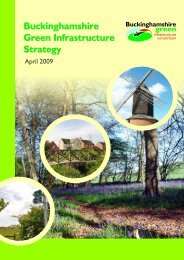 Strategy Chapter 1 - Buckinghamshire County Council