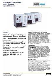 PEM Hydrogen Generators - regula servis