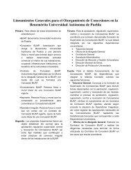 Lineamientos Generales para el Otorgamiento de Concesiones en ...
