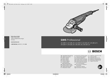 GWS Professional