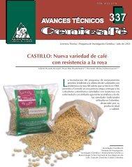 CASTILLO: Nueva variedad de café con resistencia a la ... - Cenicafé