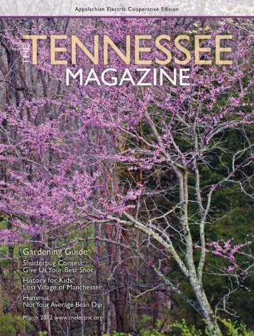 View tearsheets - Tennessee Electric Cooperative Association