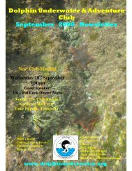 Dolphin Underwater & Adventure Club September 2008 Newsletter