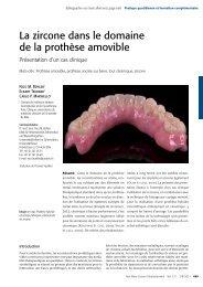 La zircone dans le domaine de la prothèse amovible - Zirkonzahn