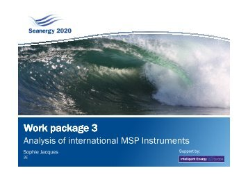 Report analysing international MSP instruments - Seanergy 2020