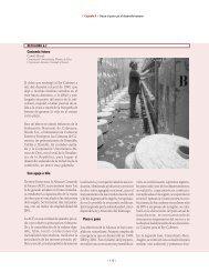Un pacto por la Region 6B pdf - Programa de las Naciones Unidas ...