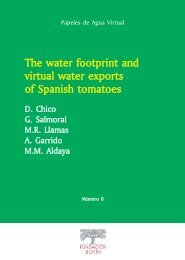 The water footprint and virtual water exports of Spanish tomatoes