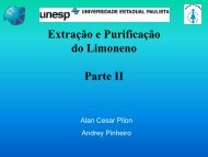 Extração e Purificação do limoneno LIC 2007 - cempeqc - Unesp