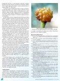 Status de ocorrência e hábitos alimentares do gaturamo-bandeira ... - Page 6