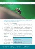 Klima, helse og utvikling (pdf) - Page 2