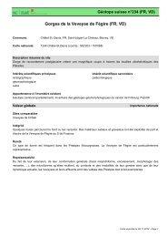 Gorges de la Veveyse de Fégire (FR, VD) - admin.ch