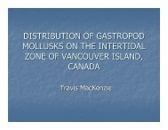 distribution of gastropod mollusks on the intertidal zone of ...