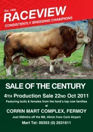 Raceview Production Sale Catalogue - Irish Simmental Cattle Society