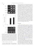 Pathogen resistance of transgenic tobacco plants ... - iGEM 2012 - Page 3