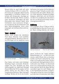 Bartgeiernews 32 - Vorarlberger Jägerschaft - Page 5
