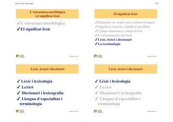Lèxic, lexicó i diccionari