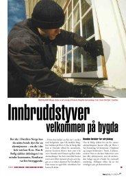 Innbruddstyver velkommen på bygda.pdf