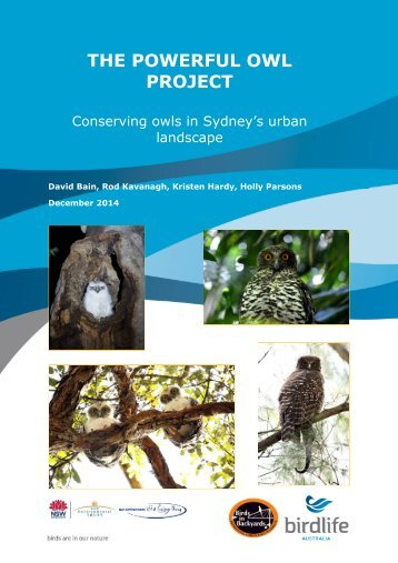 Powerful Owl Project Final_Report FINAL