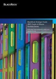 (BSF) Funds of iShares Portfolio Series - BlackRock International