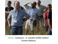 Graham Bellamy - The Chilterns AONB