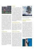 Waldkiefer - Schutzgemeinschaft Deutscher Wald - Page 3