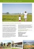 FeHLt - Neusiedler See - Seite 6