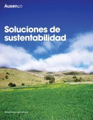 Soluciones de sustentabilidad - Ausenco