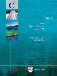 Serie Gestión Comercial de las EPS: