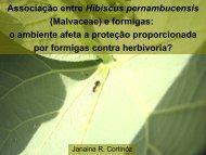 Associação entre Hisbiscus pernambucensis (Malvaceae) e ...
