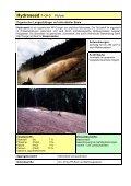 Prospekt Nassansaat - SW-Düngesysteme GmbH - Seite 2