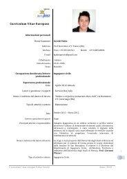 Curriculum vitae europeo - Ordine degli Ingegneri della Provincia di ...