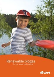Renewable biogas - State of Green