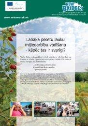 NEW BRIDGES leaflet LV.indd