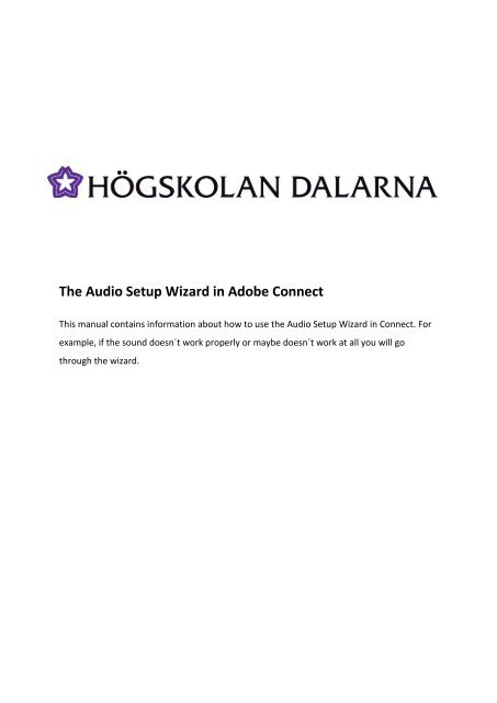 The Audio Setup Wizard in Adobe Connect version 8