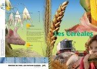 Les Céréales - Nomad Systems