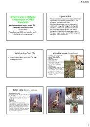 Determinace a biologie chráněných a CITES živočichů ... - KZR