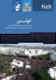 التحول الديمقراطي والانتهاكات المستمرة لحقوق الإنسان - FIDH