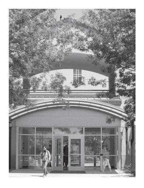 Staff Directory Santa Rosa Junior College