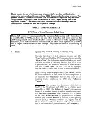 Draft 9/8/06 SAMPLE TERMS OF REFERENCE OPIC Wrap of ...