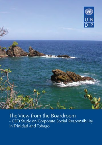 The View from the Boardroom - UNDP Trinidad and Tobago