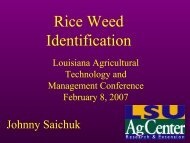 Rice Weed Identification - Louisiana Agricultural Consultants ...