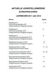 Lehrstellen/Schnupperlehren Kt. Zürich