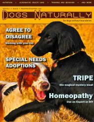 Homeopathy TRIPE - Dogs Naturally Magazine