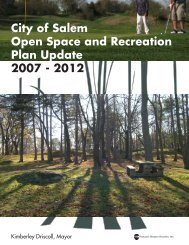 2007 Open Space and Recreation Plan (14M PDF) - City of Salem