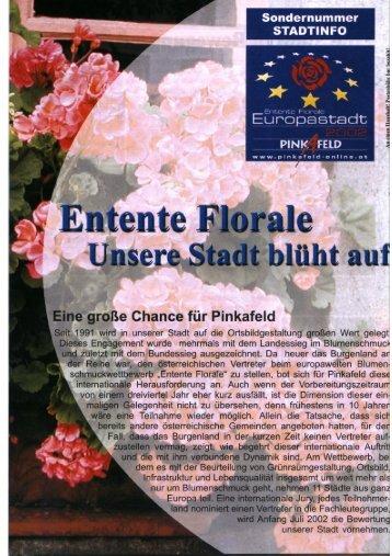 """""""Stadtinfo Pinkafeld"""" können Sie hier als pdf-Datei downloaden"""