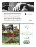 Cornelian Cherry Dogwood - Page 3
